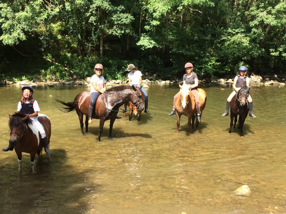Balades à cheval, à poney